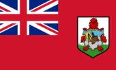 Buy Bermuda